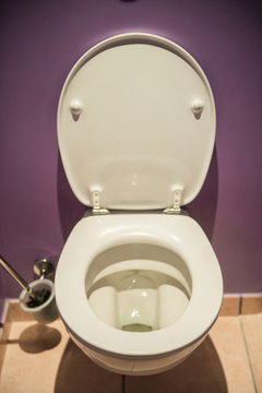 Why You Should Look at Your Poop Before You Flush - Ask Dr. Maxwell ... | Healing Chronic Pain & Disease | Scoop.it