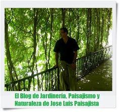 Jardines Que Me Gustan: 10 INSECTOS BENEFICIOSOS PARA TU JARDÍN | Bichos en Clase | Scoop.it