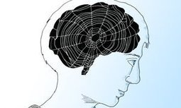 Is the internet killing our brains? | διαδικτυοματιές | Scoop.it