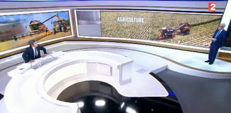France 2 relaie sa propagande, c'est Noël pour la FNSEA | Pour une agriculture et une alimentation respectueuses des hommes et de l'environnement | Scoop.it