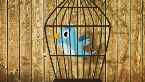 Who gets custody of Twitter when an employee quits?   Content Marketing Journal   Scoop.it