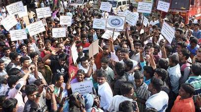 Jallikattu protests: What is the uproar in Tamil Nadu all about? | Animals R Us | Scoop.it