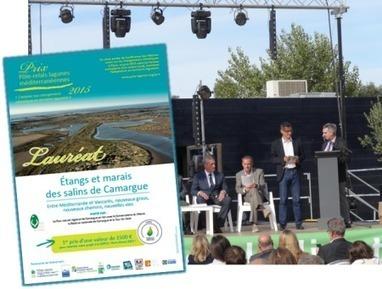 La gestion des étangs et marais des salins de Camargue récompensée par le Prix Pôle-relais lagunes méditerranéennes 2015 | Pôle-relais lagunes méditerranéennes | Environnement et développement durable en Languedoc Roussillon | Scoop.it
