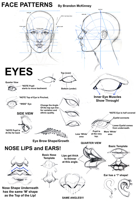 how to draw a nose in drawing references and resources