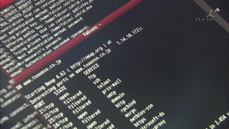 4 Nmap Scripts for Hunting 2012 popular vulnerabilities | Hacking, Reverse Engineering, Software, Scripts, Coding, Guides | Scoop.it