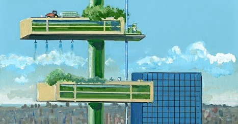 The Vertical Farm | Questions de développement ... | Scoop.it
