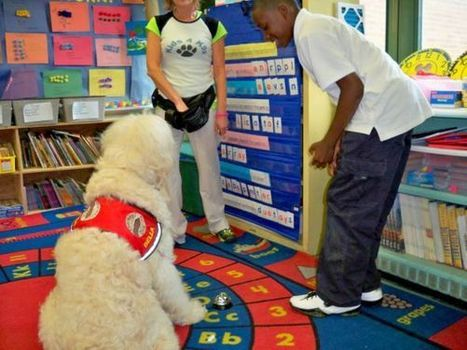Dog as teacher? Lessons in love, empathy and patience in a Baltimore classroom | Animal Rescue Web Digest | Scoop.it