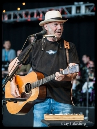 Le chanteur Neil Young lance un album et une tournée contre Monsanto | Abeilles, intoxications et informations | Scoop.it