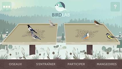 Et vous, vous utilisez BirdLab ? | Développement durable en France | Scoop.it