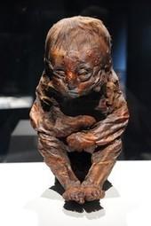 Mummies Show Symptoms, Offer Disease Clues   Heathers Scoop   Scoop.it
