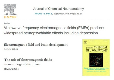 Microwave Frequency Electromagnetic Fields (EMF