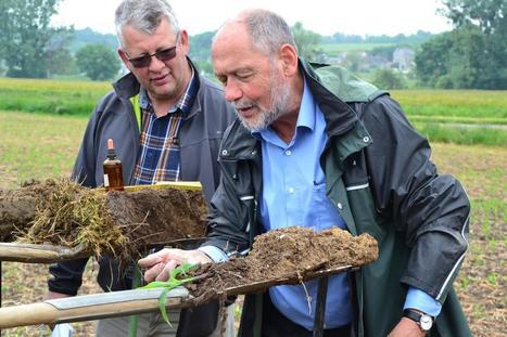 Agriculture de conservation : Échanger pour améliorer ses pratiques   Les colocs du jardin   Scoop.it