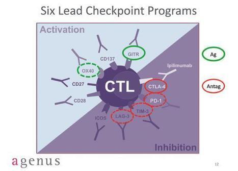 OX40' in Cancer Immunotherapy Review and Collection | Scoop it