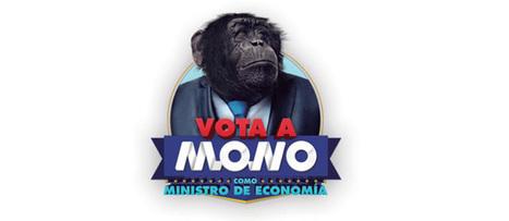 En Espagne, un singe se présente aux élections | Tendances publicitaires et marketing | Scoop.it