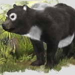 New Fossil Sheds More Light on Oldest Known ... - Sci-News.com | Palaeontology News | Scoop.it