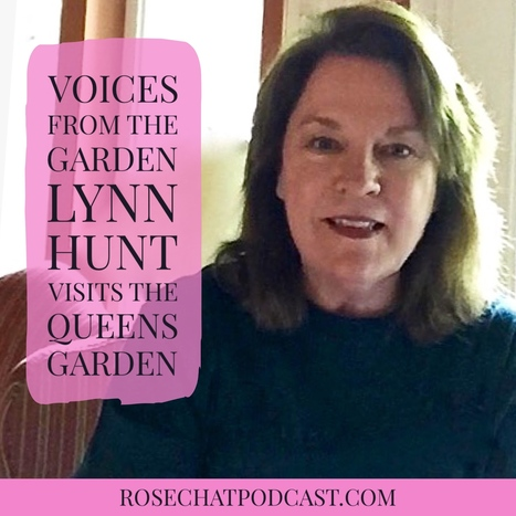 The Queen's Garden | Voices From The Garden | Lynn Hunt | All Things Rose | Scoop.it