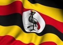 More oil fields up for grabs in the Albertine | Oil In Uganda | Uganda Oil News | Scoop.it