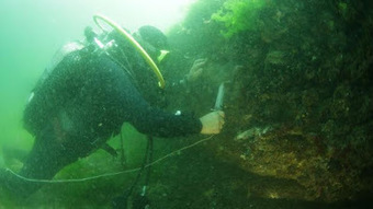The Archaeology News Network: Locating a long lost island in the Sea of Marmara   Monde antique   Scoop.it