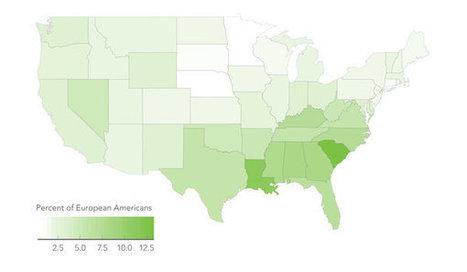 White? Black? A Murky Distinction Grows Still Murkier | digital divide information | Scoop.it