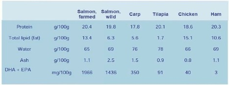Eat more fish – a healthy aternative Farmed fish – a ... - Gills Seafood | Aquaculture Products & Marketing Network | Scoop.it