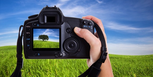 photo essay images