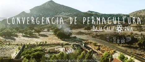 Convergencia de Permacultura en Baja California | ecoagro | Scoop.it