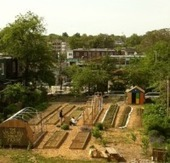 A New Zoning Code, and a New Era for Urban Agriculture in Philly ... | Green Gnome Garden News | Scoop.it