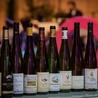 Gastronomy & Wines