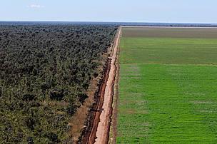 WWF lança guia para investimento agrícola responsável | Planeta Verde | Scoop.it