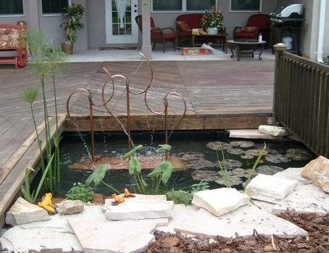 Guide to Floating Salad Bar- Edible Aquatic Plants - Garden Center TV   edible landscaping   Scoop.it