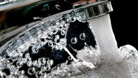 In einigen Regionen: Trinkwasser könnteum bis zu 62 Prozent teurer werden - SPIEGEL ONLINE - Wirtschaft | Agrarforschung | Scoop.it