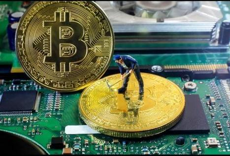 Investment Guide To 'Crypto' Coin Offerings Rating Blockchain Startups | finance | Scoop.it