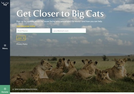 30 Call-to-Action Examples You Can't Help But Click | geeky and fun social media news | Scoop.it