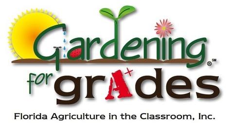 Gardening for Grades | School Gardening Resources | Scoop.it
