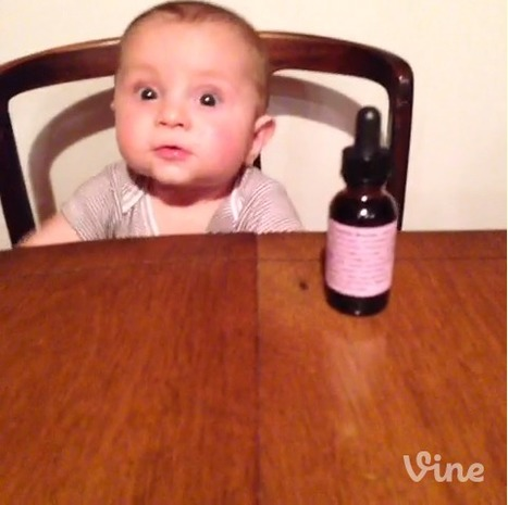 Librarians on the Fly: Revisiting VINE   APPY HOUR   Scoop.it