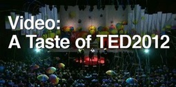 Sir Ken Robinson, what's in the school of your dreams? TED Blog | media specialists | Scoop.it