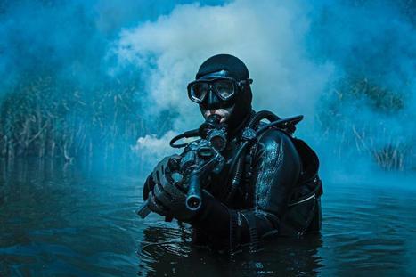 A Navy SEAL's 10 Principles For Navigating Organizational Change | Virtual Global Coaching | Scoop.it