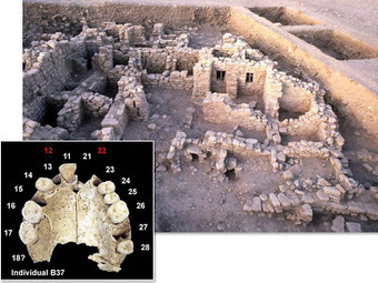First farmers were also inbred | World Neolithic | Scoop.it