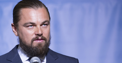 Memo to Leonardo DiCaprio: Climate Change 'Reforms' Would Hurt People | Politics and Business | Scoop.it