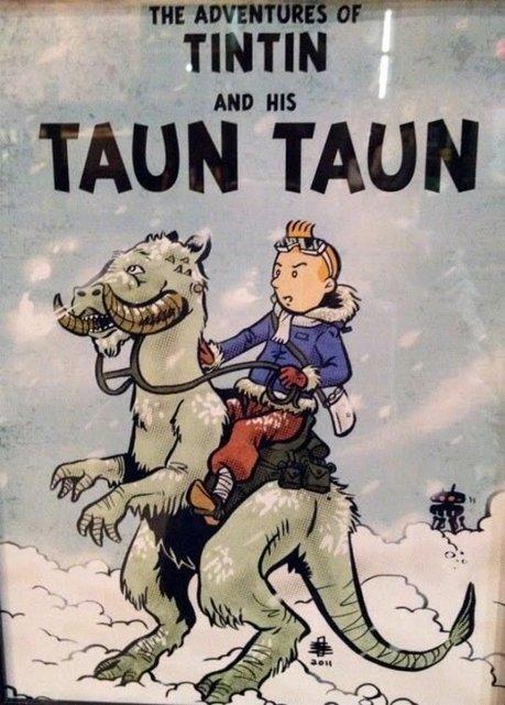 tintin et son taun taun | Glanages & Grapillages | Scoop.it