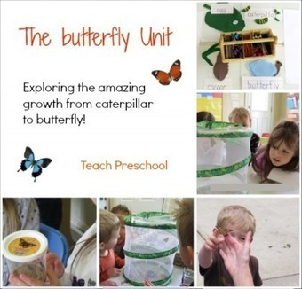 The butterfly unit in preschool | Teach Preschool | Scoop.it
