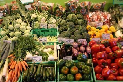 Verbraucher kaufen Bio meist bei Obst und Gemüse | Agrarforschung | Scoop.it