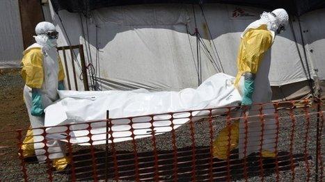 Ebola : le bilan dépasse les 3000 morts | Toxique, soyons vigilant ! | Scoop.it