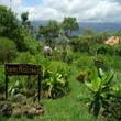 Los países más 'felices' del mundo son ecológicos | ECOagricultor | Agroindustria Sostenible | Scoop.it