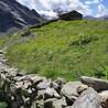 Green economy in mountain areas