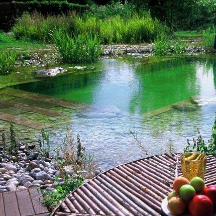 Piscine naturelle, piscine écolo : comment ça marche et des exemples de réalisations  ...   Immobilier   Scoop.it