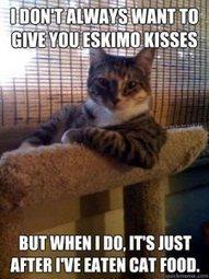 Eskimo Kisses | catnipoflife | Scoop.it