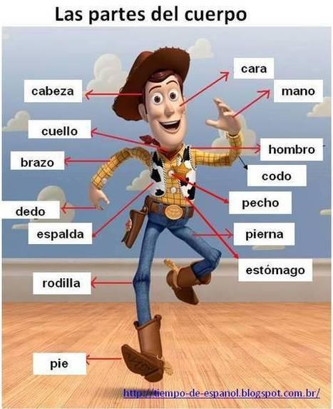 Las partes del cuerpo   Español para los...
