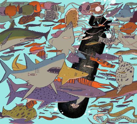 When Humans Declared War on Fish | Upsetment | Scoop.it