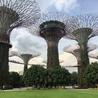 se developper à singapour